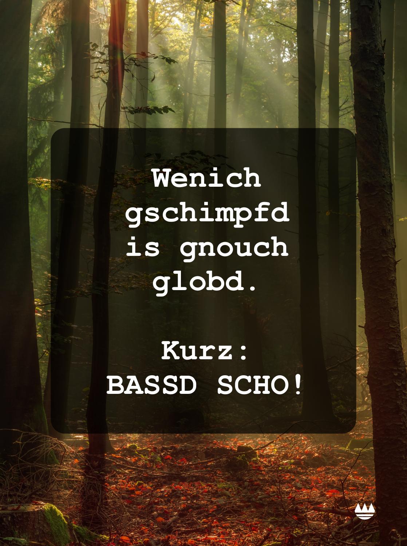 Bassd Scho Franken